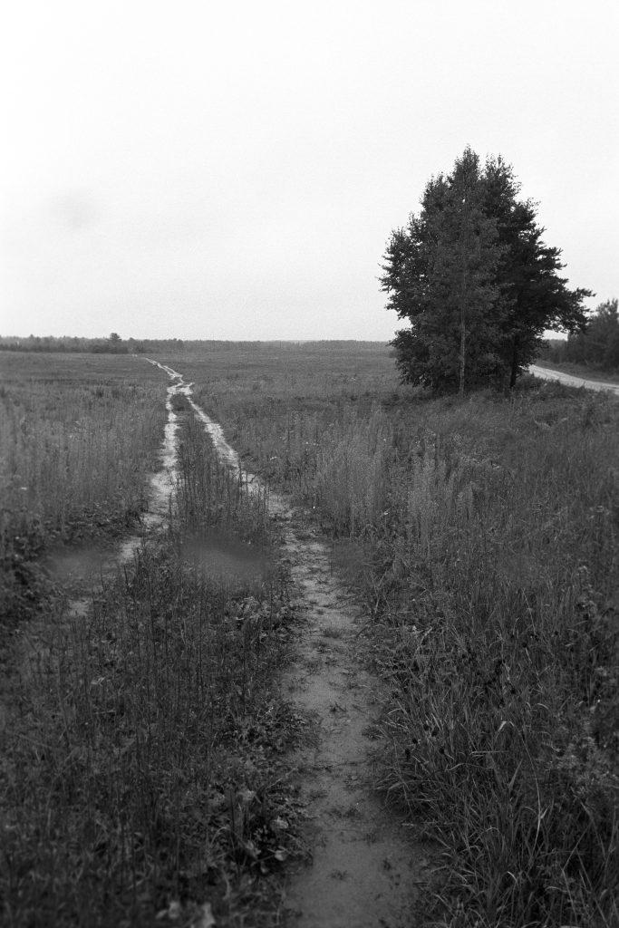 Chemin Tilley, Nouveau-Brunswick, 2008. Photographie par François Carl Duguay.